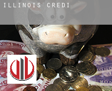 Illinois  credit